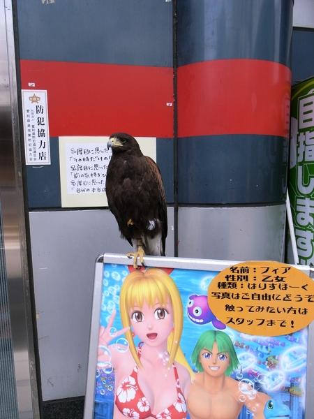 f:id:gzutetsu:20120601112805j:image