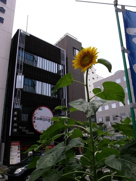 f:id:gzutetsu:20120725121341j:image