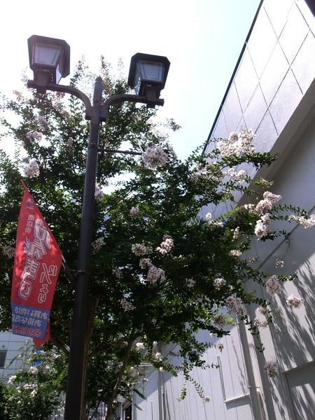 f:id:gzutetsu:20120726132048j:image