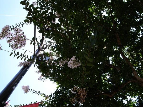 f:id:gzutetsu:20120726132110j:image