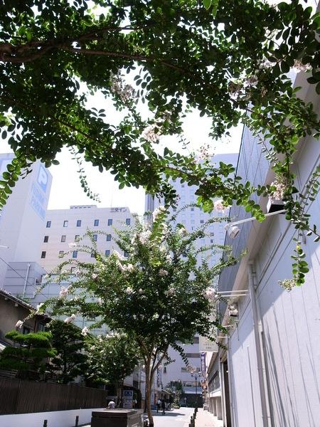 f:id:gzutetsu:20120726132144j:image