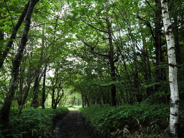f:id:gzutetsu:20120815125624j:image