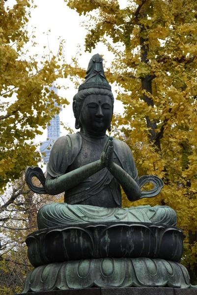 f:id:gzutetsu:20121203102547j:image