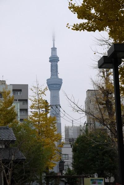 f:id:gzutetsu:20121203102620j:image