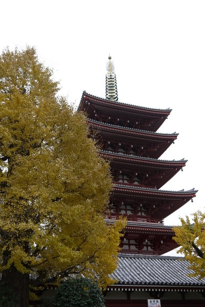f:id:gzutetsu:20121203103348j:image