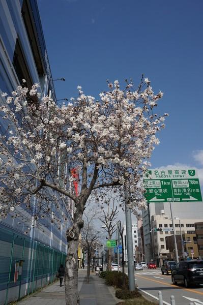 f:id:gzutetsu:20130319121137j:image