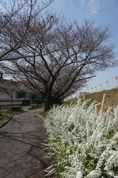 f:id:gzutetsu:20130324105719j:image