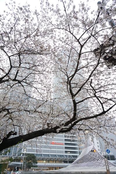 f:id:gzutetsu:20130329175105j:image