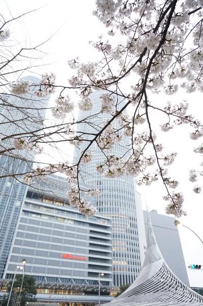 f:id:gzutetsu:20130329175248j:image