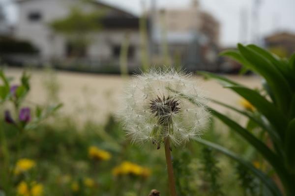 f:id:gzutetsu:20130414135835j:image