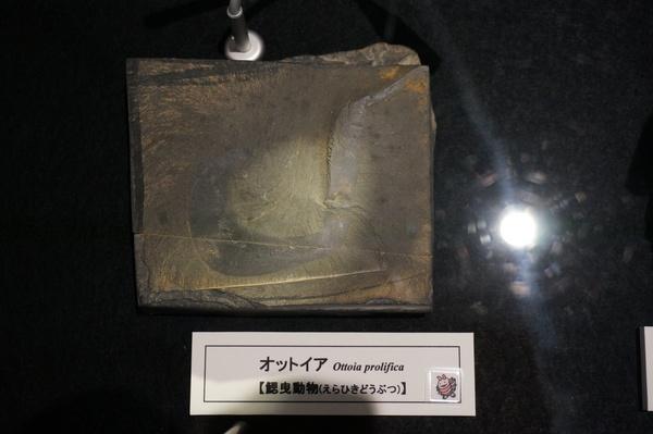 f:id:gzutetsu:20131012121943j:image