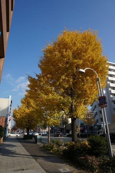 f:id:gzutetsu:20131202092519j:image
