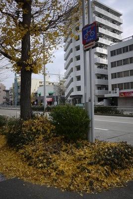 f:id:gzutetsu:20131211083824j:image