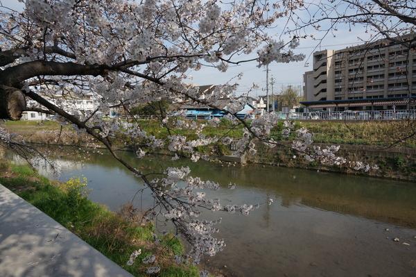 f:id:gzutetsu:20140329153717j:image