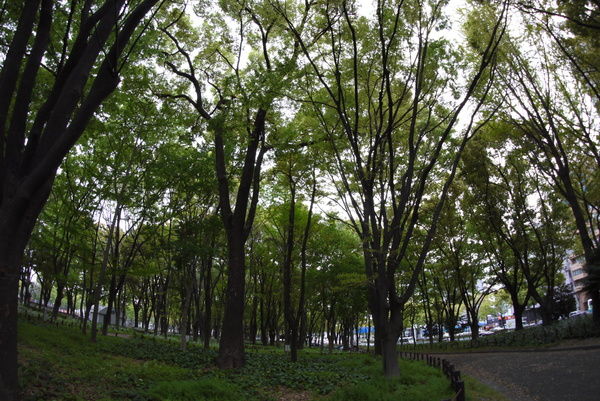 f:id:gzutetsu:20140419152933j:image