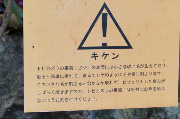 f:id:gzutetsu:20170505160917j:image