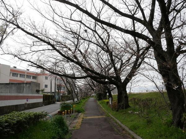 f:id:gzutetsu:20200329131737j:image