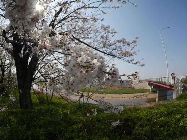 f:id:gzutetsu:20200404142622j:image