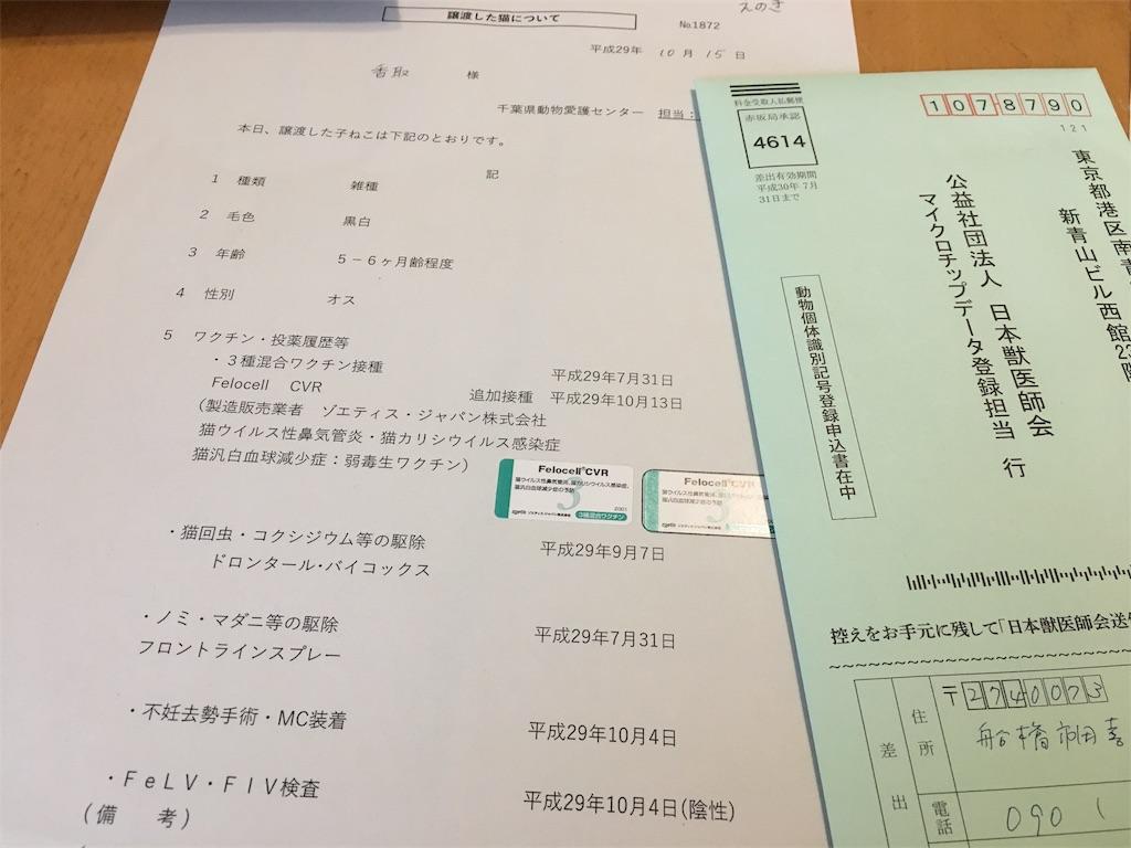 ときわがおうちに来た日のこと:千葉県愛護センターの譲渡会
