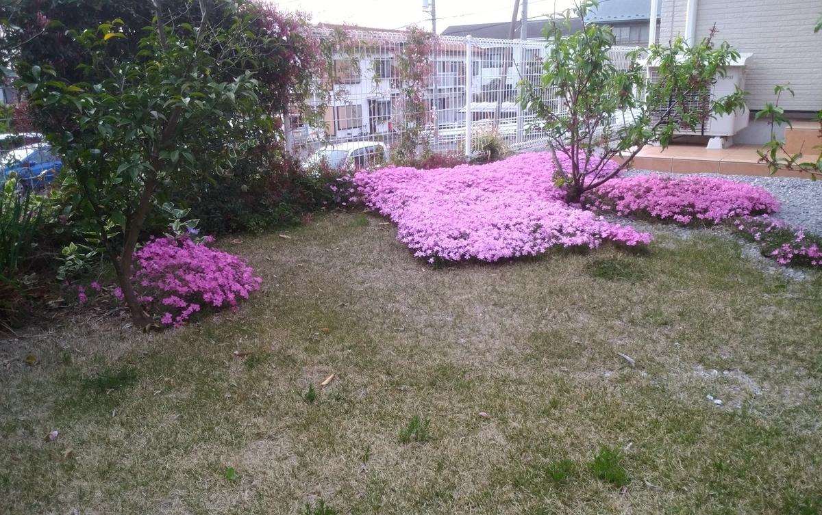 f:id:h-toshimitsu-829:20200708213358j:plain