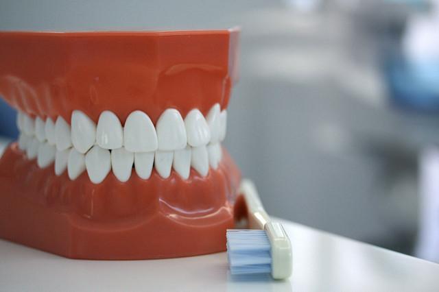 電動歯ブラシ どれがいい?