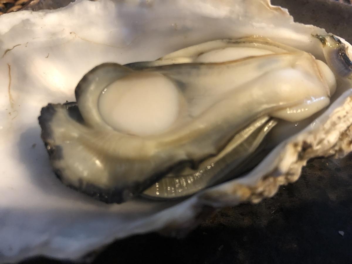 ふるさと納税 長崎県時津(とぎつ)町 牡蠣 殻付き 3kg 加熱用 レビュー