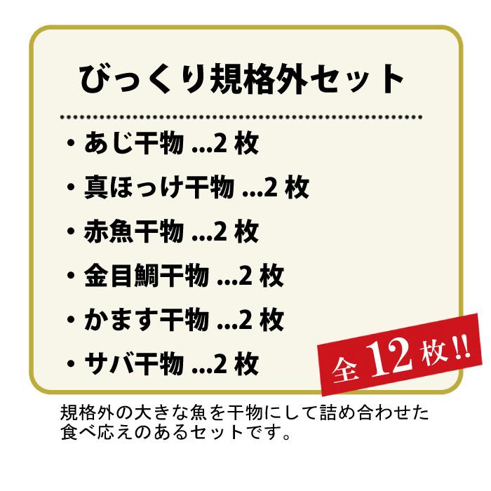 ふるさと納税 静岡県西伊豆町 びっくり規格外干物