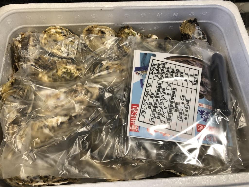 楽天 ふるさと納税 福岡県糸島産 殻付き牡蠣