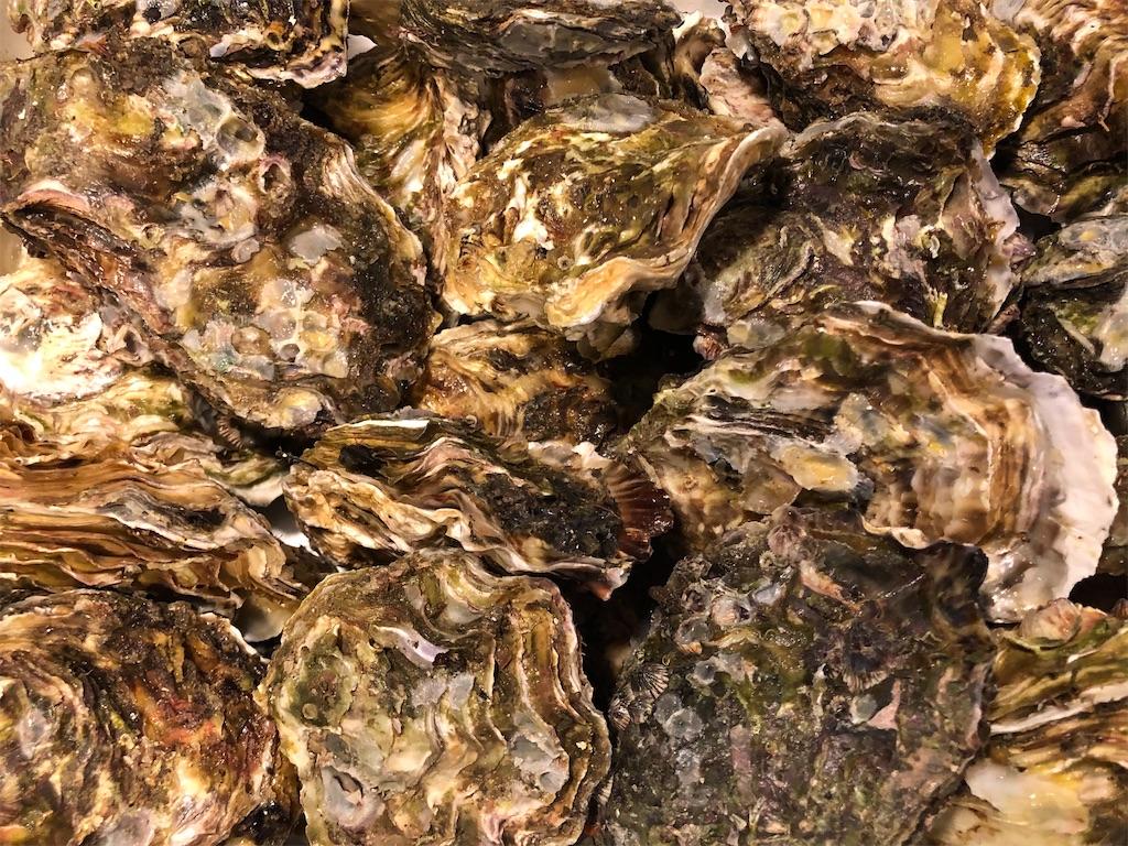 ふるさと納税 石川県穴水(あなみず)町 能登穴水 牡蠣 クチコミ レビュー 1万円