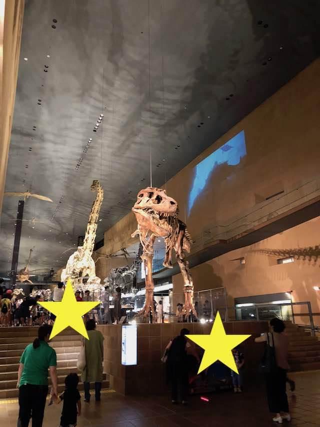 いのちのたび博物館 常設展示