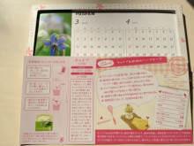 ハーブの種子付きカレンダー