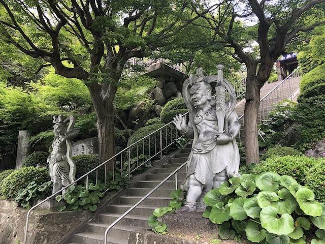 藤の寺 吉祥寺