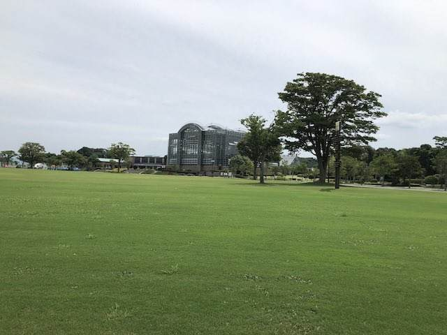 大芝生の広場