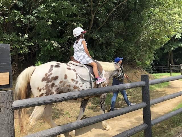 馬にも乗りました