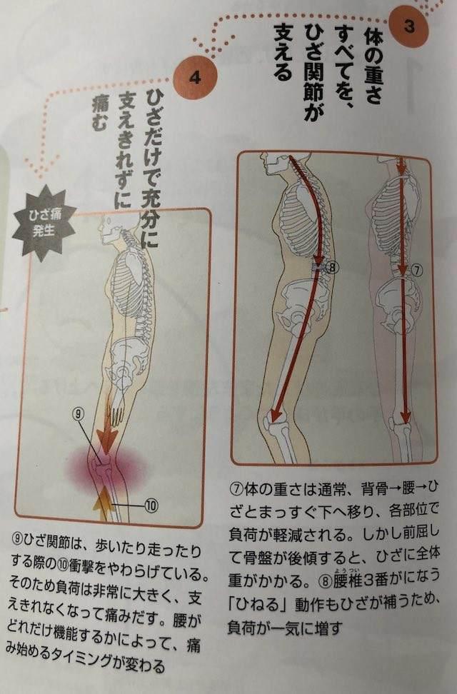 弱った体がよみがえる人体力学 膝痛2