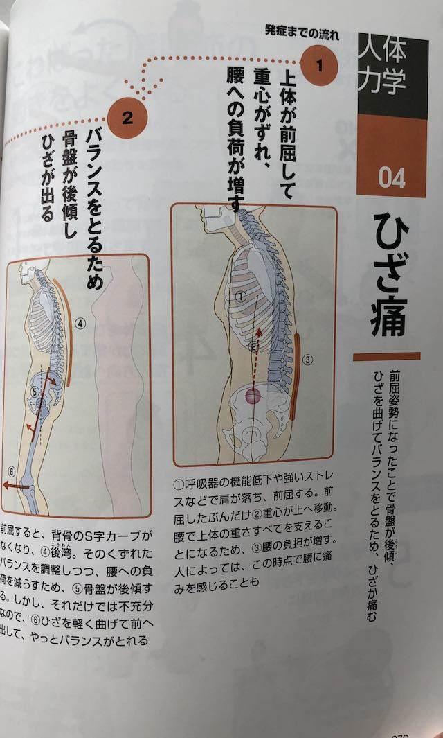 弱った体がよみがえる人体力学 膝痛1