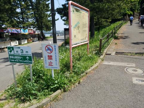 f:id:h_shibayama:20180501194043j:plain
