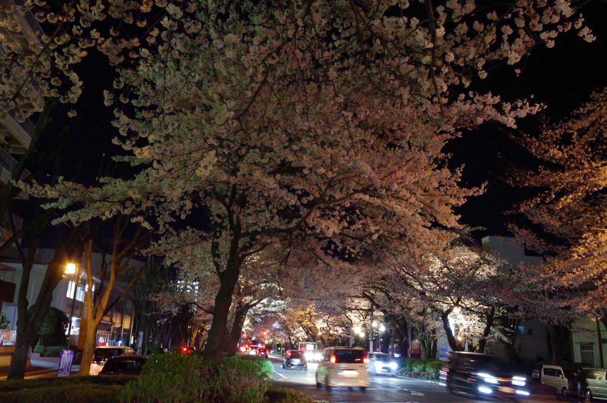 f:id:h_yukichi:20190331214606j:plain