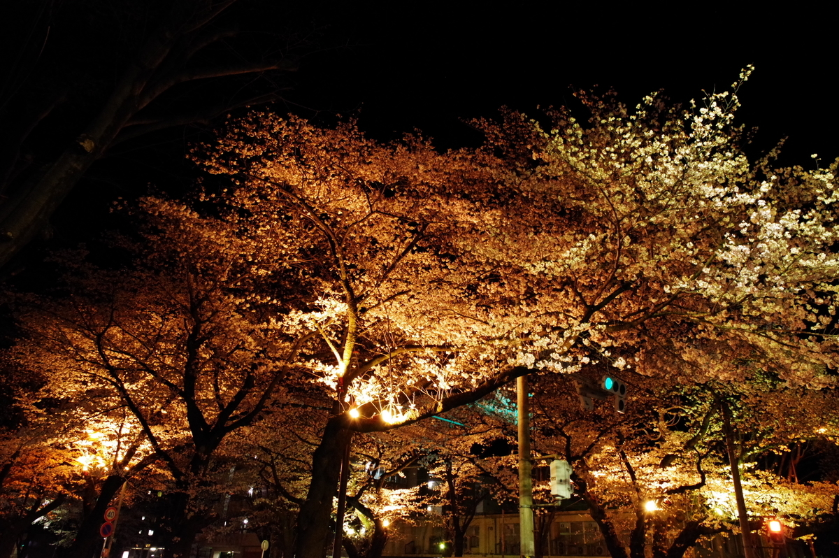 f:id:h_yukichi:20190331214729j:plain