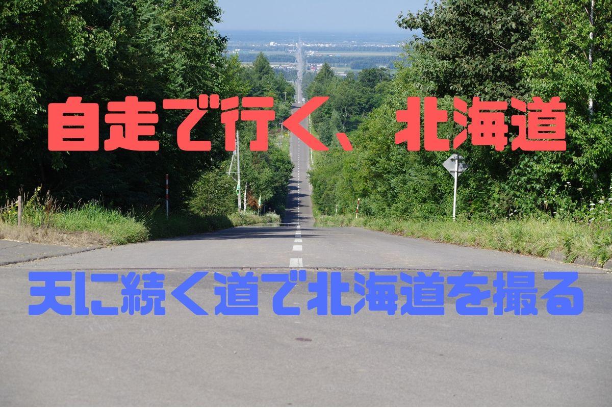 f:id:h_yukichi:20190827003310j:plain
