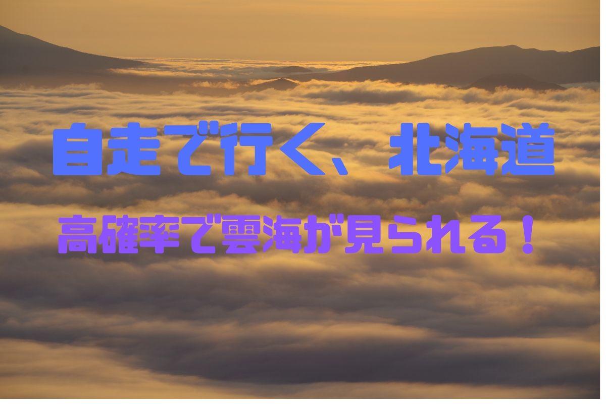 f:id:h_yukichi:20190828233246j:plain
