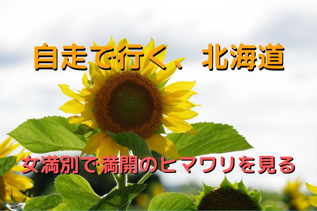 f:id:h_yukichi:20190830003149j:plain