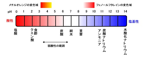 f:id:ha-kurehanosatosi:20160828202512j:plain