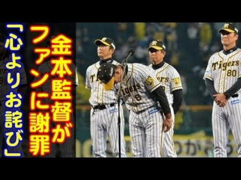 f:id:ha-kurehanosatosi:20181011135924j:plain