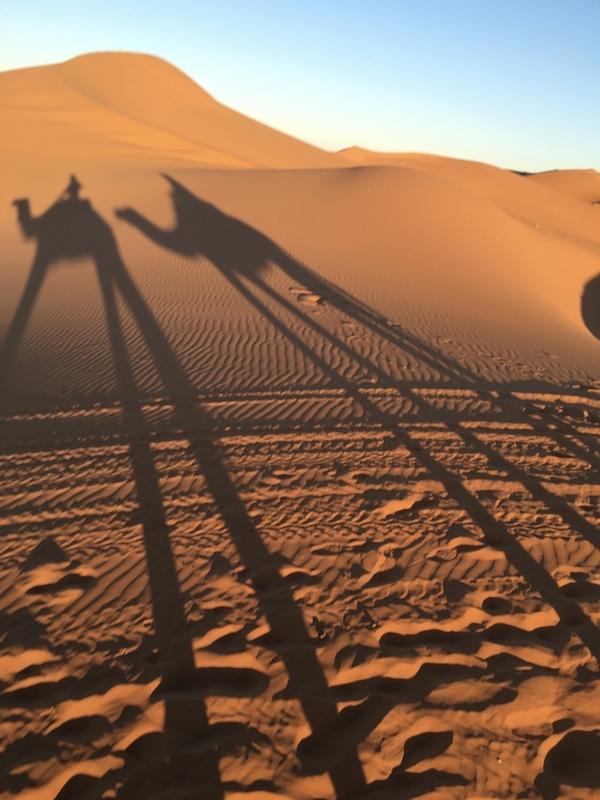 Sahara desert camp サハラ砂漠キャンプ