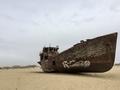 Aral sea ship graveyard at Muynak アラル海船の墓場ムイナク