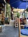 Art street at Amman アートな路