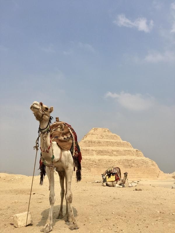 f:id:habibi-traveller:20210314195605j:plain