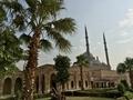 Mohammad Ali Mosque ムハンマド・アリー・モスク