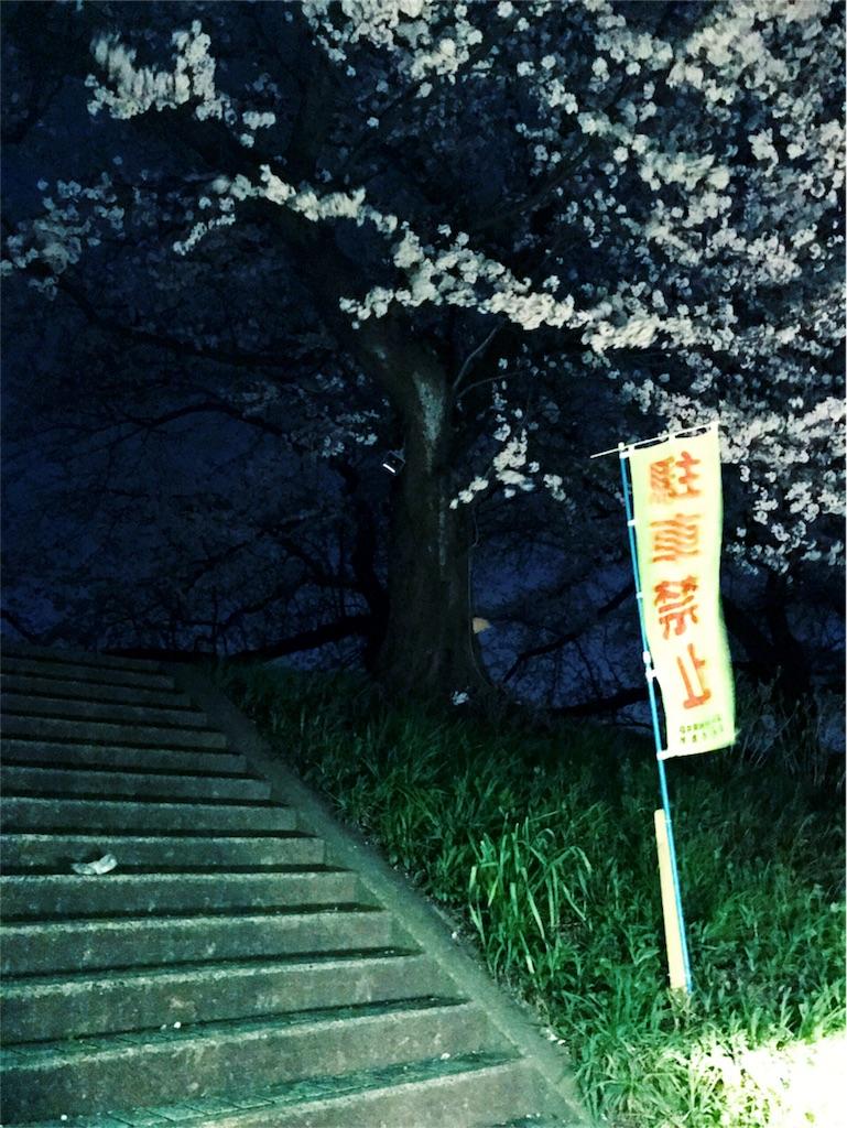 f:id:habutaemochiko:20170411001521j:image